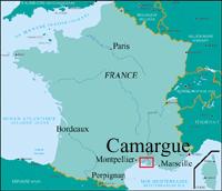 Camargue Karte.Rfi Die Camargue Ohne Reis Eine Salzwüste