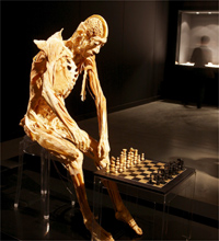 The chess player(Photo: Organisers)