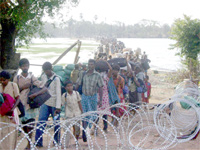 A group of Tamil refugees file out of the combat zone in this Army handout photo.(Photo: Reuters)