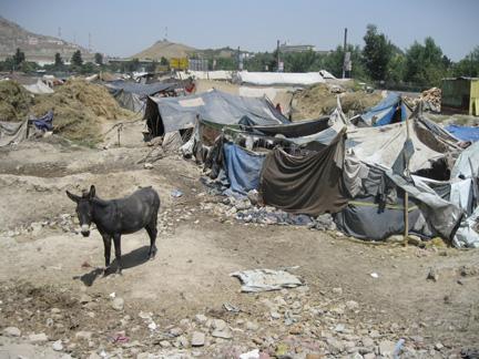 Pashtun migrants' tents on the outskirts of Kabul(Photo: Tony Cross)
